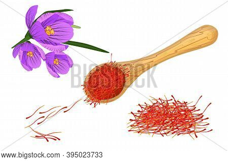 Saffron Set Isolated On White Background. Dried Spice Saffron Threads In Wooden Spoon And Crocus Flo