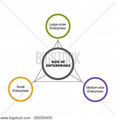 Diagram Of Size Of Enterprises With Keywords. Eps 10 - Isolated On White Background