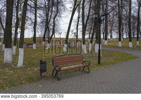 New Light Brawn Bench In Park Near The Alley In Falling Season In Calm Weather