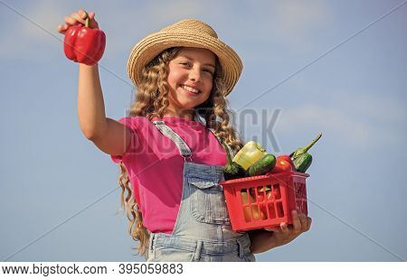 Girl Adorable Child Farming. Homegrown Veggies. Natural Vitamin Nutrition. Crops Harvest. Harvest Se