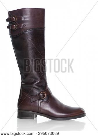Knee-high brown leather fashion womens boot isolated on white background