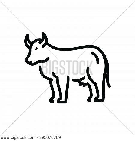 Black Line Icon For Cow Farming Bossy Livestock Useful Dairy Cattle Give-milk Milk Farm Heifer Breef