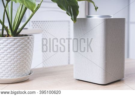 Electronic Equipment Smart Speaker On The Table In The Room And Houseplant,  Smart Speaker. Gadget I