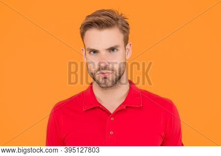 Strict Glance. Handsome Man Unshaven Face And Stylish Hair. Caucasian Man On Yellow Background. Bear