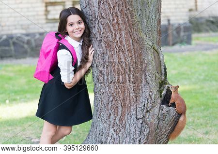 Happy Small Kid In Uniform With School Backpack Research Squirrel Climbing Tree In Park, Zoology.