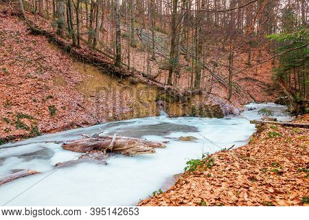 Frozen River In The Forest. Cold Frosty Weather