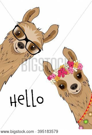 Two Cute Alpaca Llamas On A White Background. Vector