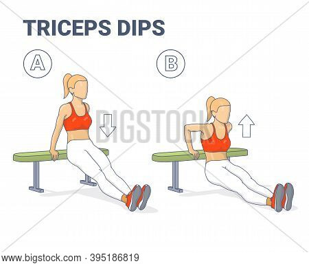 Bench Triceps Dips Female Exercise Guide Colorful Illustration.