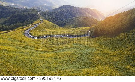Aerial View Landscape Of Mountain In Twilight Time Nature Flower Tung
