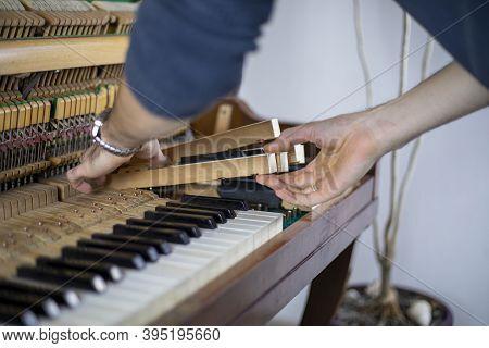 Insert Piano Keys, Piano Tuning, Tuner, Musical., Horizontal,