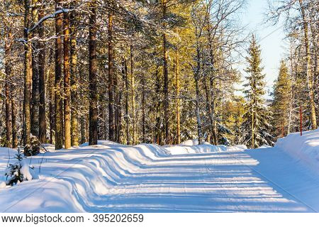 Snowy wide road in the forest. The northernmost zoo in the world. Sunny frosty winter day.  Finland. The concept of active, winter, environmental and photo tourism