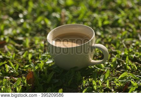 White Cup Of Hot Coffee On The Grass , Still Life , Softly Focus
