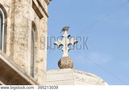 A Dove Sits On A Stone Cross On The Roof Of The Church Of The Condemnation On The Via Dolorosa Stree
