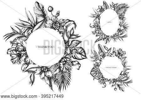 Floral Frames With Black And White Monstera, Banana Palm Leaves, Strelitzia, Heliconia, Tropical Pal