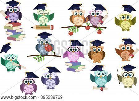 Set Of Graduation Owl. Back To School Graduation Owl