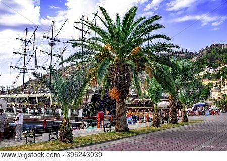 Turkey, Alanya - October 22, 2020: Palm Trees Grow On The Touristic Promenade Near The Alanya Yat Li