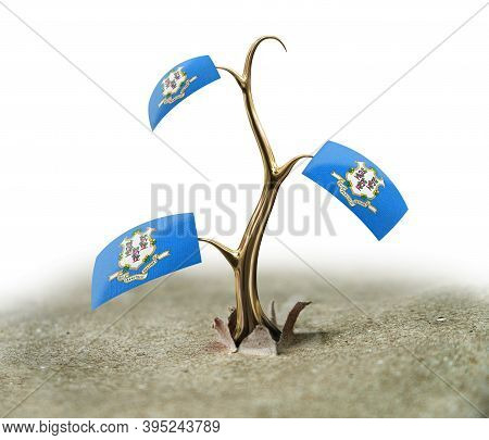 3d Illustration. 3d Sprout With Connecticut Flag On White