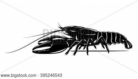 Realistic Broad-fingered Crayfish Black And White Isolated Illustration, One Big Freshwater Noble Cr
