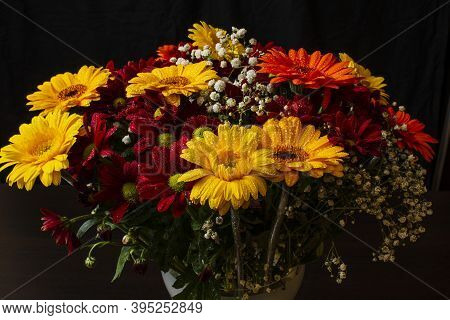 Beautiful Bright Orange And Yellow Gerbera Flower On The Background Of Other Red Chrysanthemum Flowe