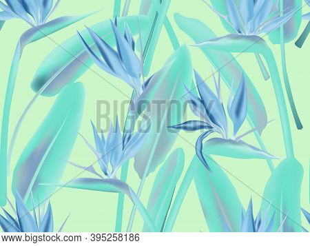 Bird Of Paradise Tropical Flower Vector Seamless Pattern. Jungle Plant Paradise Tropical Summer Fash