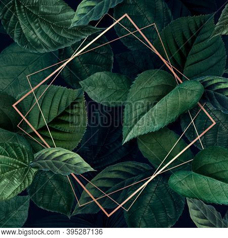 Rhombus frame on a leafy background