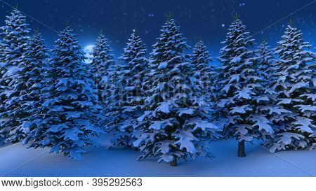 New Year And Christmas 2021 Background. Christmas Trees. Branches In The Snow. View Of The Night Mag