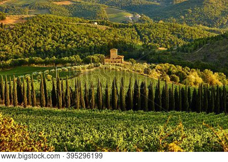 Chianti , Italy - August 13, 2020 : landscape vineyard in Tuscany province Italy landmark