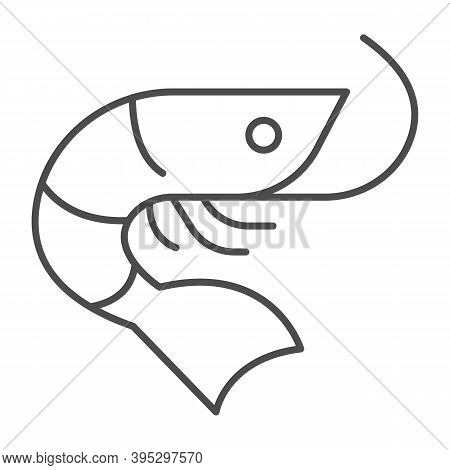 Shrimp Thin Line Icon, Fish Market Concept, Seafood Sign On White Background, Shrimp Icon In Outline