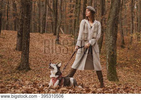 Unconditional Love. Siberian Husky Favorite Pet. Animal Husbandry. Girl Pretty Stylish Woman Walking