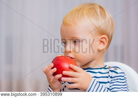 Child Eat Apple. Kid Cute Boy Sit At Table With Plate And Food. Healthy Food. Boy Cute Baby Eating B