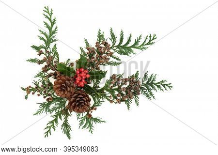 Winter holly, cedar cypress leaves, pine cone decoration forming a festive natural display element for Christmas &  New Year on white background. Flat lay, top view, copy space.
