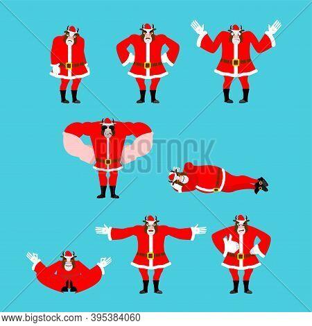 Santa Bull Set Pose. Good And Evil. Cheerful And Sad. Yoga And Stupid. Christmas Cow