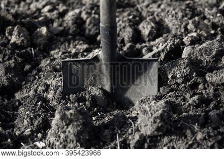 Spade Stuck In Dug Ground. Illustration For Garden Work.