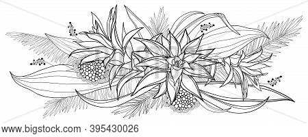 Vector Bouquet Of Outline Tropical Guzmania Flower Bunch And Palm Leaf In Black Isolated On White Ba