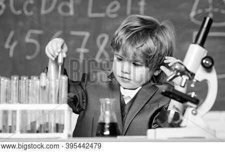 Little Boy At Lesson. Back To School. Little Boy Is Making Science Experiments. Biology Science. Kid