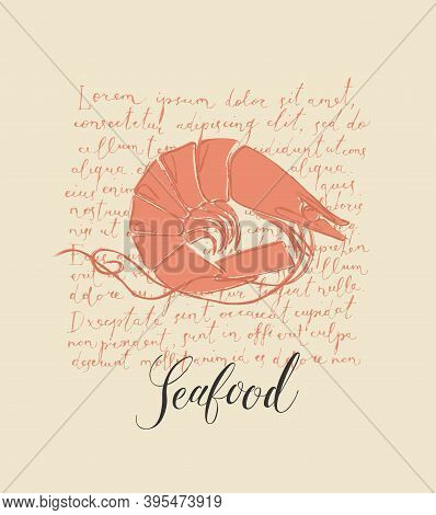 Vector Banner Or Menu For A Seafood Restaurant Or Store. Hand-drawn Illustration With A Shrimp And A