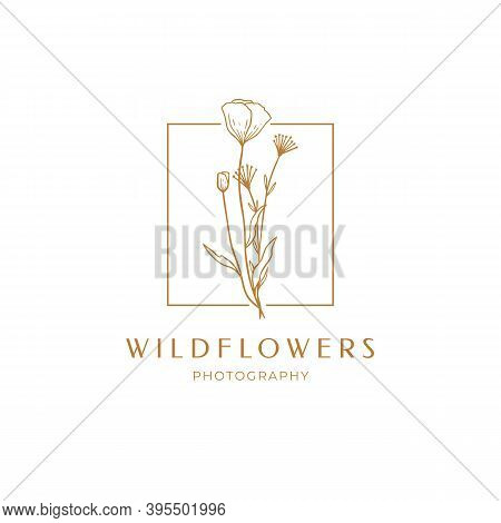 Floral Poppy Label For Package. Wildflower Linear Logo Sketch. Floral Frame Emblem For Wedding, Phot