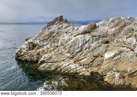 Point Lobos State Natural Reserve - California