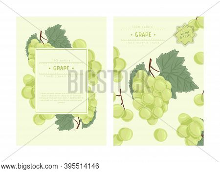 Wine Grapes, Table Grapes Vector Hand Drawn Card Design. Fresh Berries On Branch With Leaves.