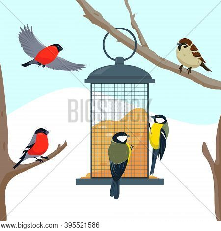 Bird Feeder On The Tree Branch And Different Eating Birds. Feeding Birds In Cold Weather. Vector Ill