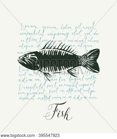 Vector Banner Or Menu For Seafood Restaurant Or Shop. Hand-drawn Illustration With A Black Fish And