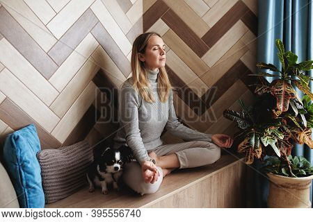 A Young Woman Sits In The Lotus Position And Meditates. A Chihuahua Dog Is Lying Nearby. Concentrati