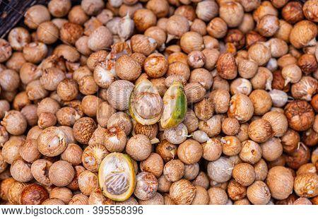 Kadenahalli, Karnataka, India - November 3, 2013: Closeup Of Heap Of Freshly Peeled Betel Nuts With