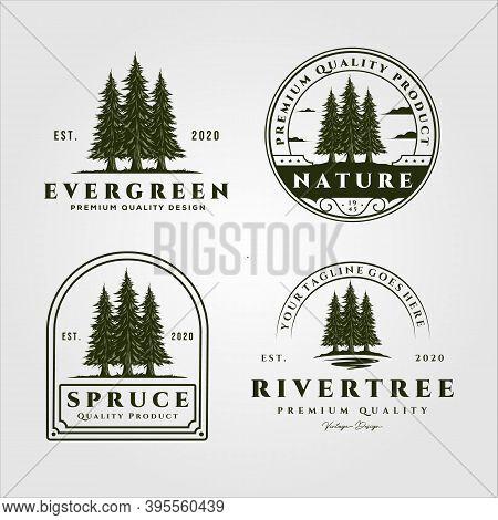 Pine Trees Vector Set Vintage Logo Illustration Design, Collection Of Evergreen Vector Logo Design