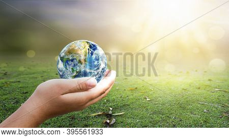 Hand Holding  Earth On Green Grass And Sunny Sky Background. Elements Of This Image Furnished By Nas