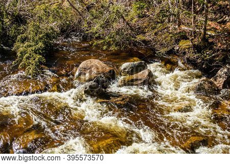The Raging Waters Of Deer Arm River. Gros Morne National Park, Newfoundland, Canada