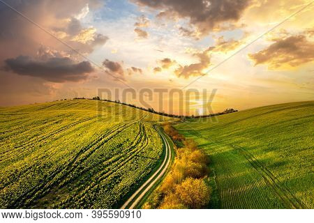 Aerial View Of Bright Green Agricultural Farm Field With Growing Rapeseed Plants And Cross Country D