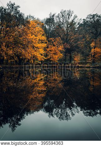 Vertical Landscape Photo Of Moody And Dramatic Lake With Colorful Trees In Water Reflection. Lake In