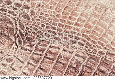 Texture Of Genuine Leather Close-up, Embossed Under The Skin A Reptile, Alligator, Beige Brown Color