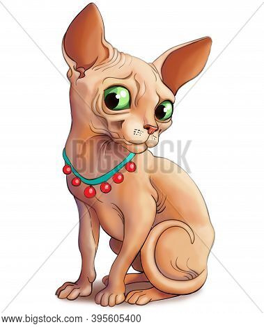 Illustration. A Funny Cat Of The Sphynx Breed In A Beautiful Collar. He Looks Playfully.